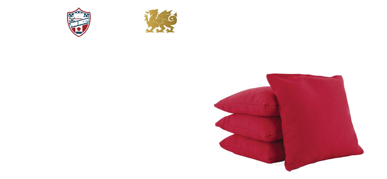 NAPHC_2017Bean Bags